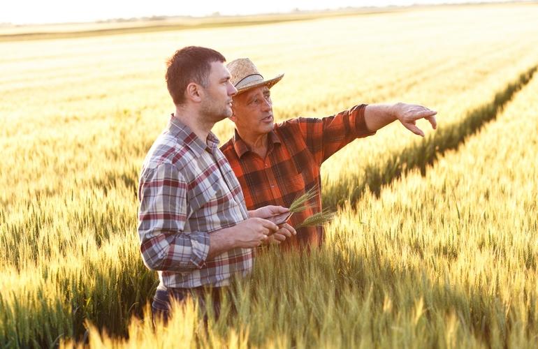 Подает ли крестьянское хозяйство декларации по ндс